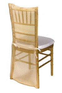 Coin Gold Organdy Chair Back