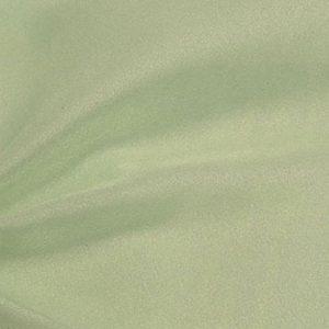 Celedon Sparkle Organza