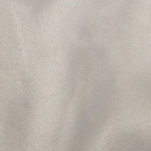 Light Grey Organdy