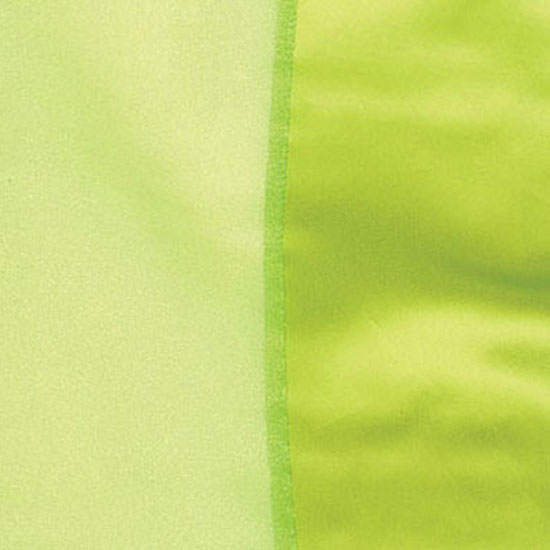 Lime Organdy with Satin Trim