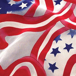 Stars & Stripes Organdy