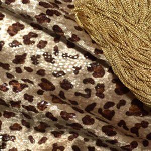 LIN_NP_AP_CheetahT_x