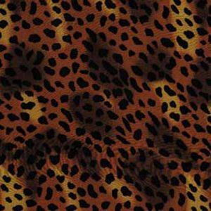 Animal Print Sheer #4