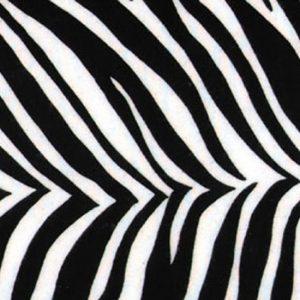 LIN_NP_AP_Zebra_x