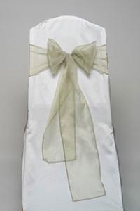 Celadon Organdy Tie