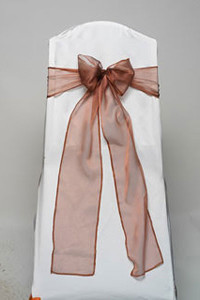 Copper Iridescent Sheer Tie