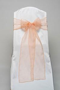 Peach Organdy Tie