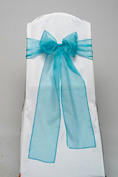 Turquoise Organdy Tie