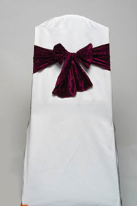 Burgundy Crushed Velvet Tie